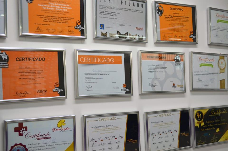 Certificados da Unique Pet Center - Clínica Veterinária e Pet Shop no Buritis